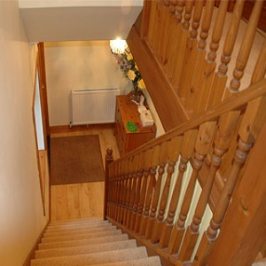 stairs softwood revamp
